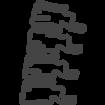 006-spine-bone